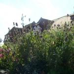 LavendelHausen